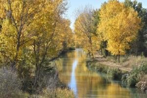 Au canal de Castille