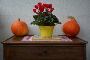 La-décoration-d'automne-(Ge